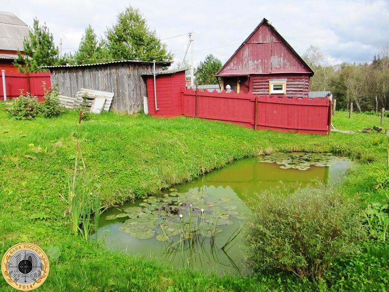 Золево. Частный пруд с кувшинками на окраине деревни - есть ли в нём караси?