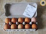 Сколько стоит десять яиц в магазине «Фасоль» города Красногорска? А сколько стоит в других местах Московской области?
