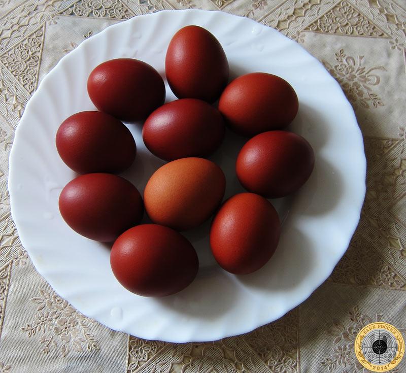Десяток яиц, крашенных в луковой шелухе, к празднику светлой Пасхи - довольно простой способ окраски куриного яйца